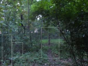 Ghosts of Gettysburg Part 2 - Reynolds Woods
