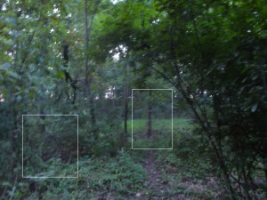 Ghosts of Gettysburg Part 2 - Soldier on path and kneeling in bushes on left
